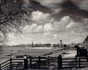 overzicht polderlandschap
