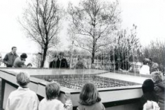 waterorgel-foto-WD