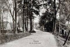 Hoorn-Bonte-paal